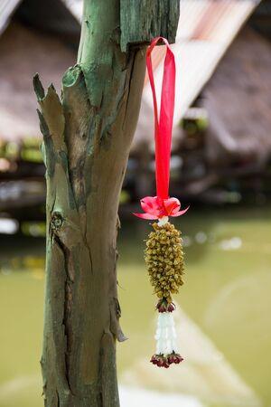 tree jasmine: dried jasmine garland hanged on tree Stock Photo