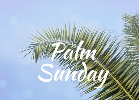 Text PALM SUNDAY and Palm leaf against blue sky Holy Week Easter concept Long weekend spring break