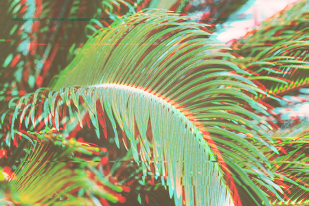 Close up of palm leaves background with glitch effect surreal floral background summer day concept, blurred