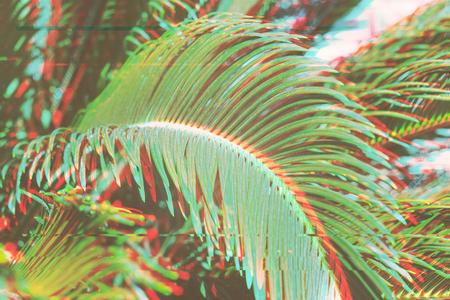 Schließen Sie oben von Palmblättern Hintergrund mit Glitch-Effekt surrealen Blumenhintergrund Sommertag Konzept, verwischt Standard-Bild - 99176999