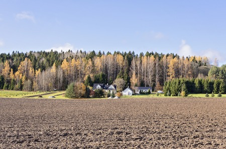 Panoramic view of farm farmhouse with neatly plowed field on background of the autumn forest Stok Fotoğraf