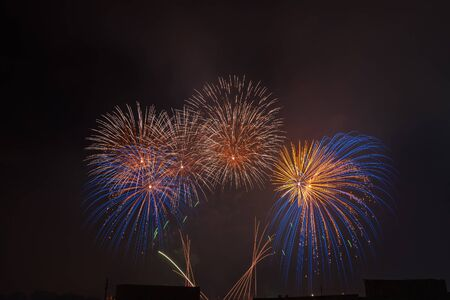 Colorful beautiful fireworks salute against the dark night sky. Abstarct pattern of salute Foto de archivo - 127562775