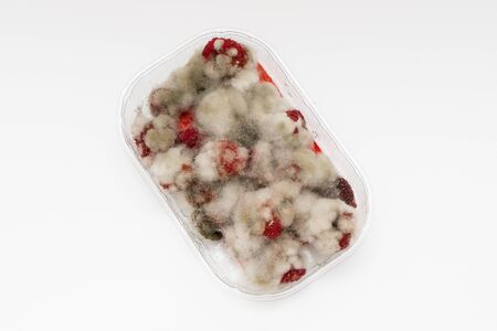 Closeup of rotten moldy raspberry in plastic box isolated on white background, top view. Damaged ripe berry with Botrytis Cinerea mold Foto de archivo - 127562875