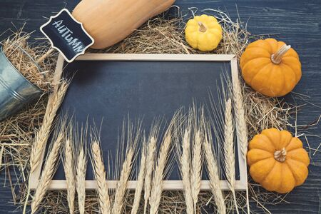 Top view of black chalkboard with copy space and decorative yellow pumpkins on dry straw. Template for Thanksgiving day and harvest crop day celebration Foto de archivo - 127562899