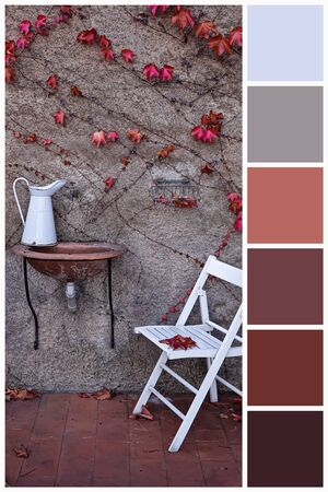 Swatch color palette matching autumn colors. Collage collection combination of autumn light and dark colors palette