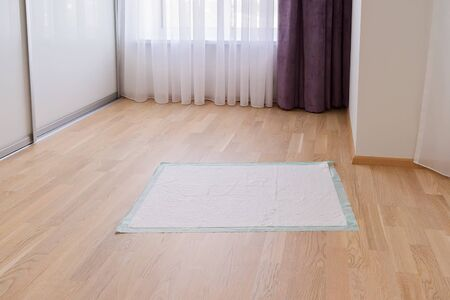 Pee diaper pads for puppy on floor in room. Waterproof pet pads for protecting flooring surface Reklamní fotografie