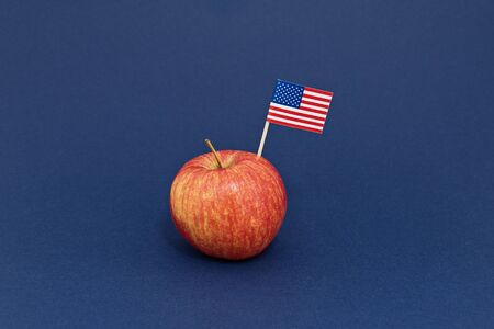 Red apple with United State of America flag as a symbol of New York City on purple background. Knowledge and education concept