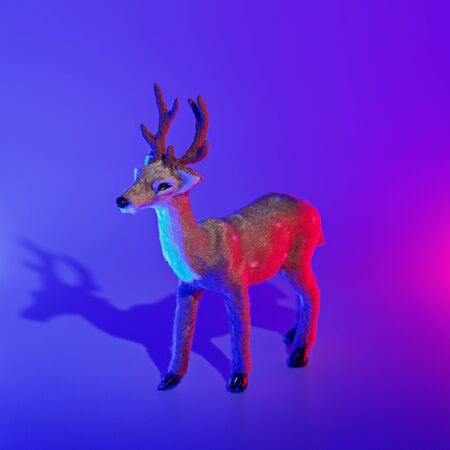 Modern conceptual art deer with shadow in duotone pink and blue lights. Christmas decoration concept, square format, copy space concept Reklamní fotografie