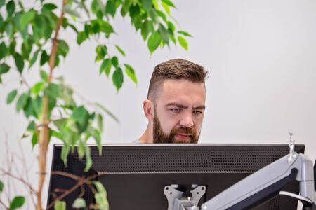 Bearded man works behind computer monitor in modern office with house natural live ficus. Connecting with nature in workplace concept Stock fotó - 137155344