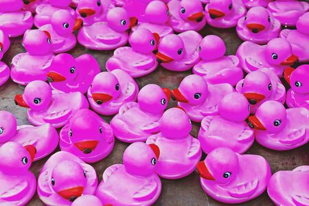 Group of pink rubber ducks closeup view. Rubber duck race is type fundraising event. Contemporary art poster Banque d'images