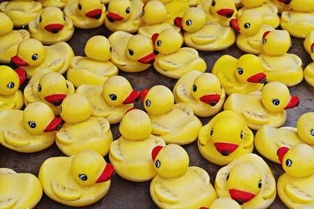 Group of yellow rubber ducks closeup view. Rubber duck race is type of fundraising event where thousands of rubber ducks race on river