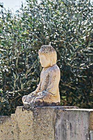 Vesak day is Buddha's Birthday. Little Buddha statue on fence in olive garden
