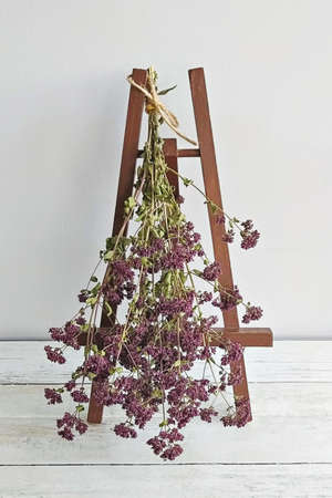 Bunch of dried oregano flowers on mini easel. Concept of autumn mood