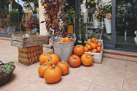 Variety of pumpkins in baskets for sale with price tag during Thanksgiving and Halloween