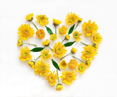 round: Flowers composition in shape of heart made of yellow flowers on white background. Spring, summer, easter concept. Flat lay, top view