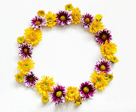 round: Flowers composition round frame wreath made of various yellow and pink flowers on white background. Spring, summer, easter concept. Flat lay, top view