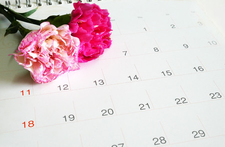 Sweet pink carnations on calender, love concept. Stock Photo