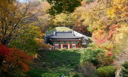 Colorful autumn leaves of Seokguram Grotto. Stock Photo