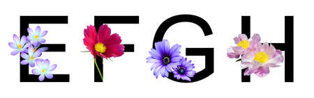 Flower font alphabet e, f, g, h made of real flowers. Collection of flora font for decoration in spring, summer concept.