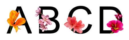 Flower font letter a, b, c, d create with real floral. Bloom flora font for decoration in spring, summer concept Banque d'images