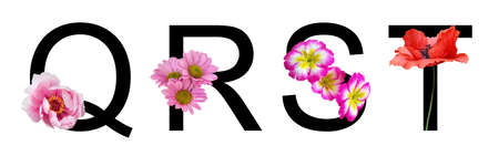 Flower font letter q, r, s, t create with real floral. Bloom flora font for decoration in spring, summer concept.