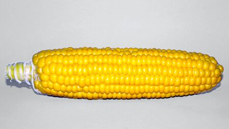 Yellow corn Isolated on white background