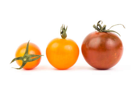 Fresh tomato on white background photo