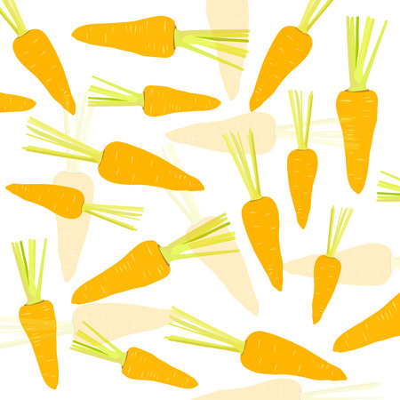carotene: Carrot vector background Illustration