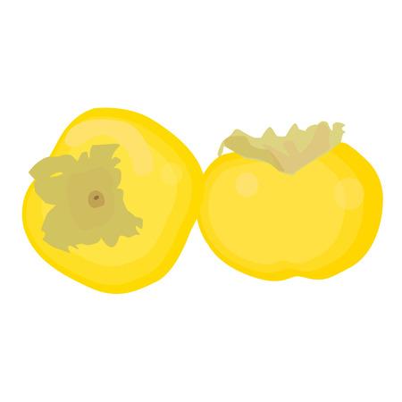 caqui: Persimmon vector fruta no fundo branco