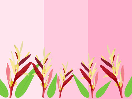 heliconiaceae: Heliconia flower vector background