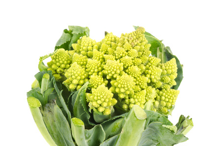 romanesco: Fresh cauliflower romanesco on white background Stock Photo