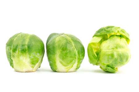 brussel: Fresh brussel sprouts on white background