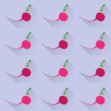 radish: Radish vegetable seamless pattern vector background Illustration