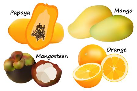 mango slice: Tropical fruit vector Illustration