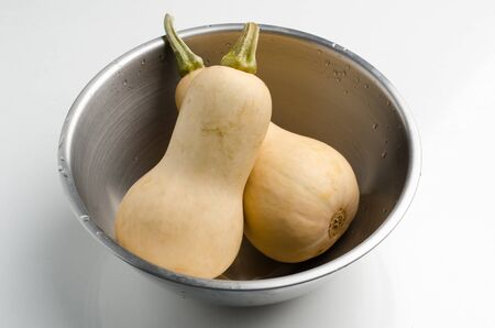 butternut: Butternut squash in the bowl on white background Stock Photo