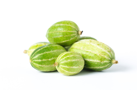 Small gourd on white background,Food ingredient,Organic and Healthy vegetable