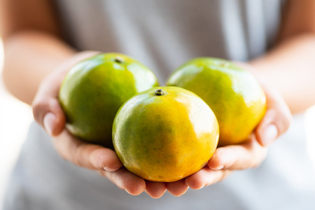 Tangerine orange fruit holding by hand for giving Stock Photo