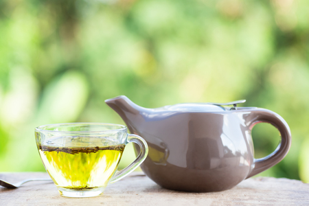 Cup of tea and tea pot with green nature background