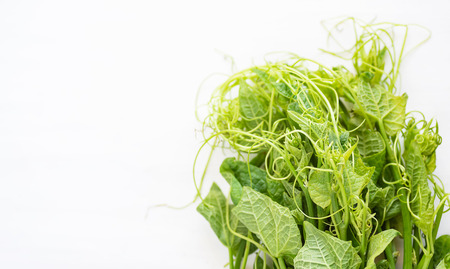 Fresh Chayote leaf on white table, organic vegetables Foto de archivo - 117273275