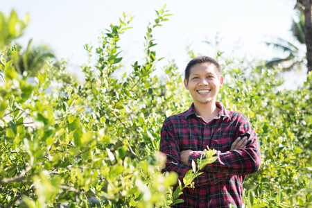 Asian farmer smiling and arms crossed in lime fruit garden