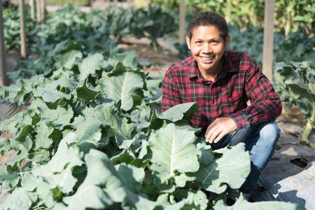 Asian farmer smiling in organic vegetable garden