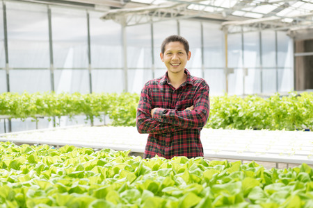 Portrait of Asian farmer in hydroponics vegetables farm