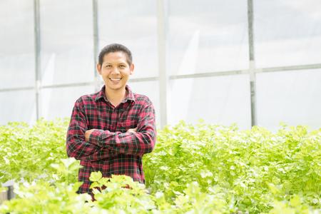 Asian farmer in hydroponics vegetables farm Zdjęcie Seryjne