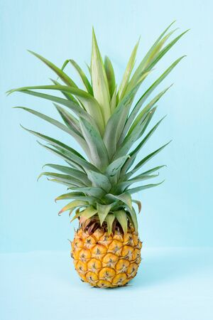 Pineapple fruit on pastel background, tropical fruit