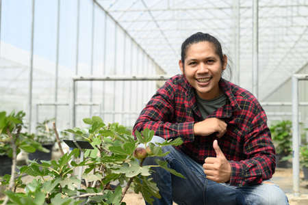 Young man Asian farmer in organic fig tree greenhouse Banco de Imagens