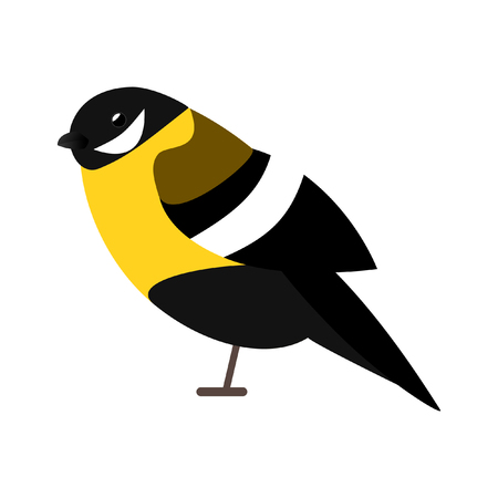 Tit birdb Illustration