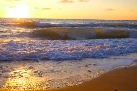 Beach and tropical sea. High quality photo