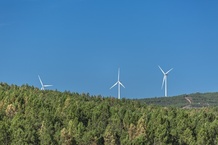 Eco Theme, landscape, wind turbines horizon, on top of mountains, forest, blue sky, Portugal