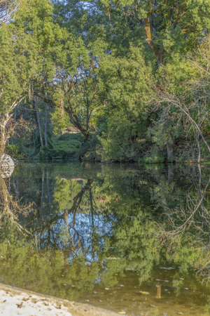 Theme river, trees on river in mountain, margins with rocks and vegetation and mirror image in water in Portugal
