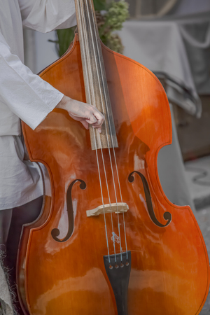 View of person playing double bass on the street...